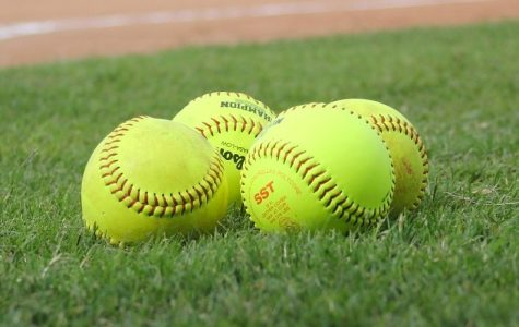 Prospective Softball Club Seeking Players